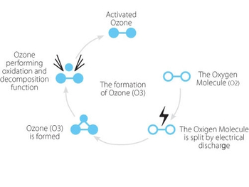 The principle of ozone sterilization
